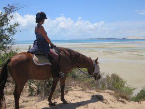 Rando cheval Mozambique