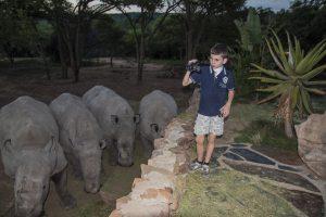 Safari en Afrique du Sud